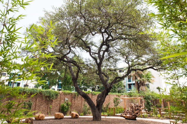 """The """"Storytelling Tree"""" in the DoSeum's East Garden features shade and hand-carved chairs from reclaimed wood. Photo by Christine Sargologos."""