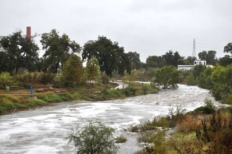 The San Antonio River creeps up the river bank walls near Roosevelt Park. Photo by Iris Dimmick.