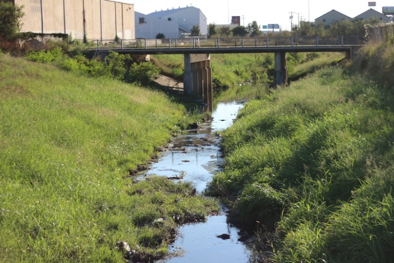 The San Pedro Creek on a piece of property behind 1901 South Alamo. Photo by Joan Vinson.