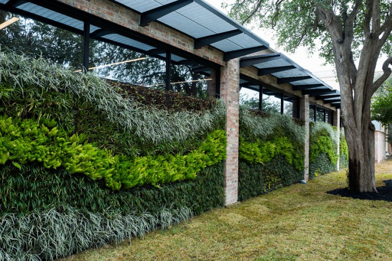The living wall facing the Commanders House. Photo by Scott Ball.