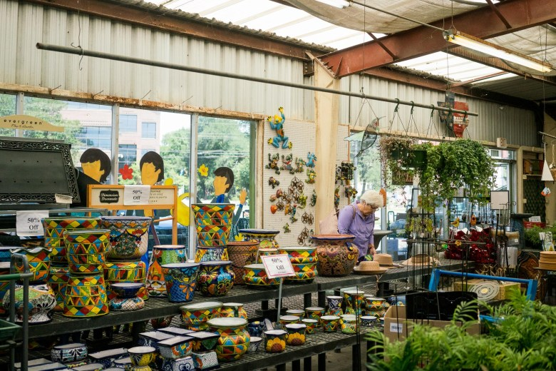 All plants are 30% off and merchandise is 50% off. Photo by Kathryn Boyd-Batstone