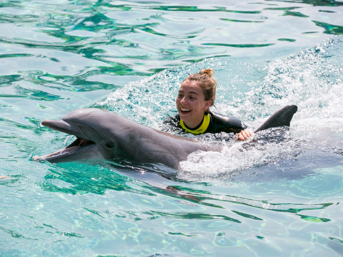 Rivard Report Intern Reporter Katie Walsh swims with a dolphin in SeaWorld's new Discovery Park exhibit. Photo by Kathryn Boyd-Batstone.
