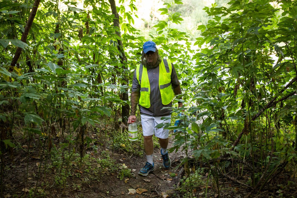 Tom Christal walks through thick brush in a mosquito resistant outfit to deliver food and water for cats. Photo by Scott Ball.