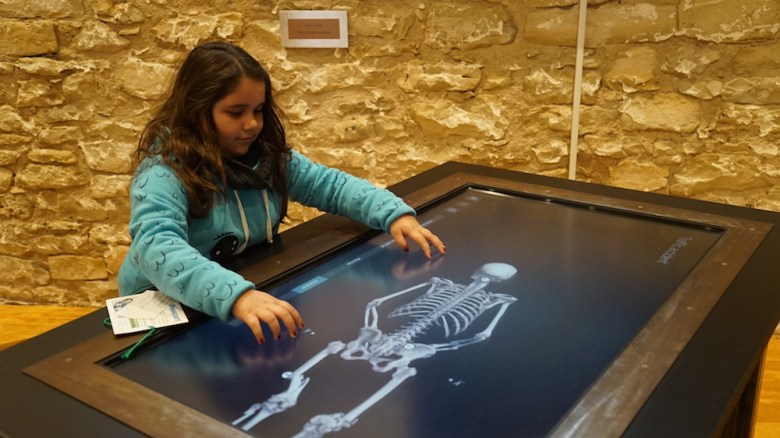 An SAISD student uses the virtual autopsy table at the Hill Country Science Mill.