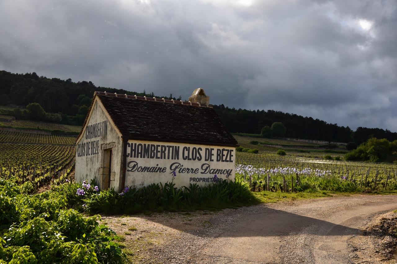 The Chambertin-Clos de Bèze vineyard.