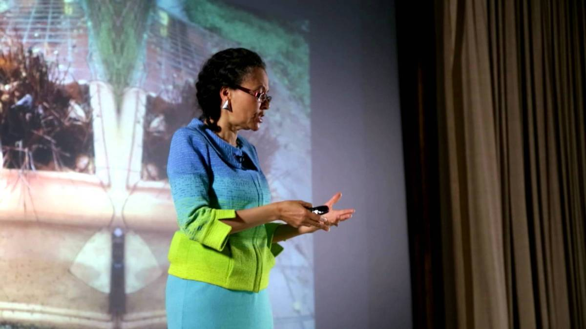 Dr. Camara Jones gives her TED talk on racism.