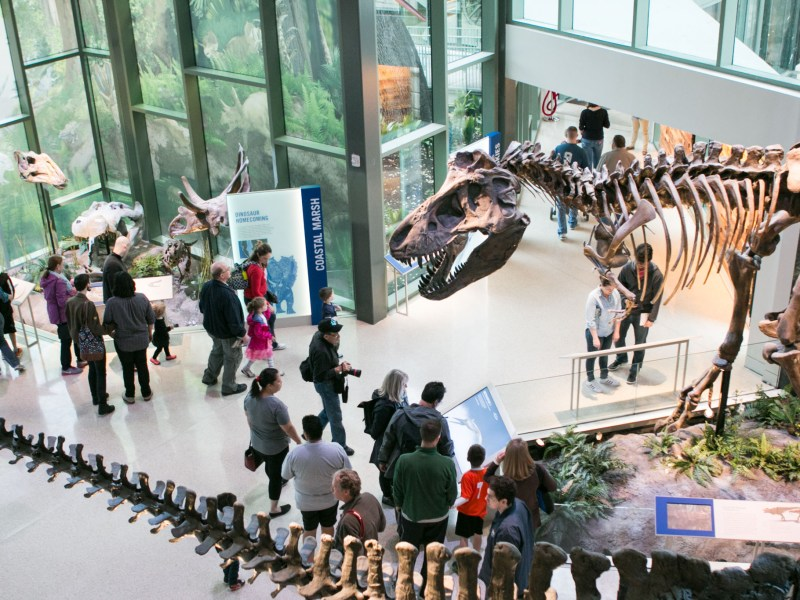 A crowd explores the exhibits at the grand debut of the New Witte on March 4.