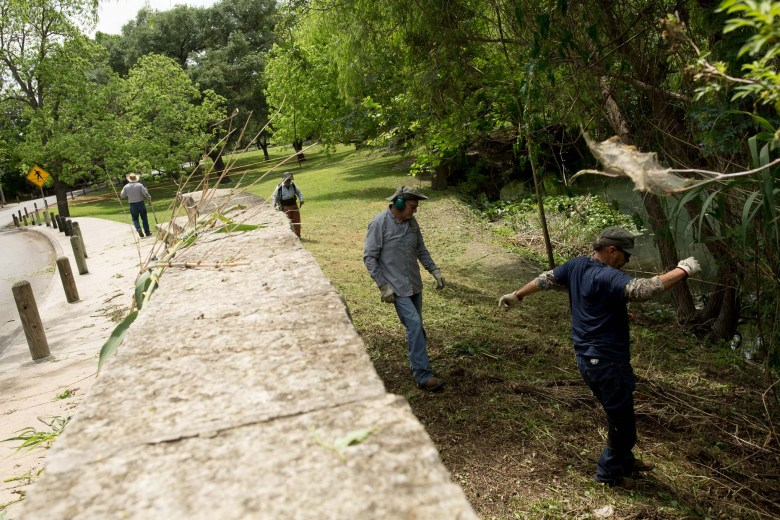 City employees work to clear our large brush from the banks of the San Antonio River at Brackenridge Park.