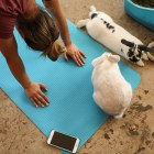 A yogi does the downward dog pose during a session of bunny yoga at Mobile Om Base Studio.