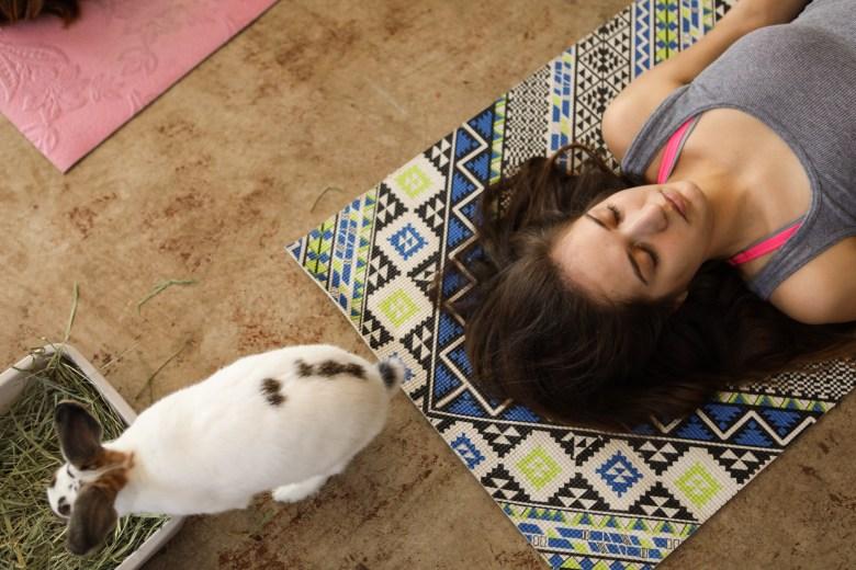 Krystal Saenz takes deep breaths during a session of bunny yoga at Mobile Om Base Studio.