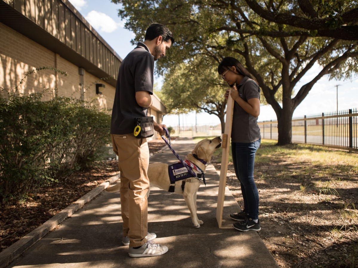 Paws for Purple Hearts Program Instructors (from left) Martin Bergamaschi and Lindsey Velasco practice Annie's training in turning on a light switch.