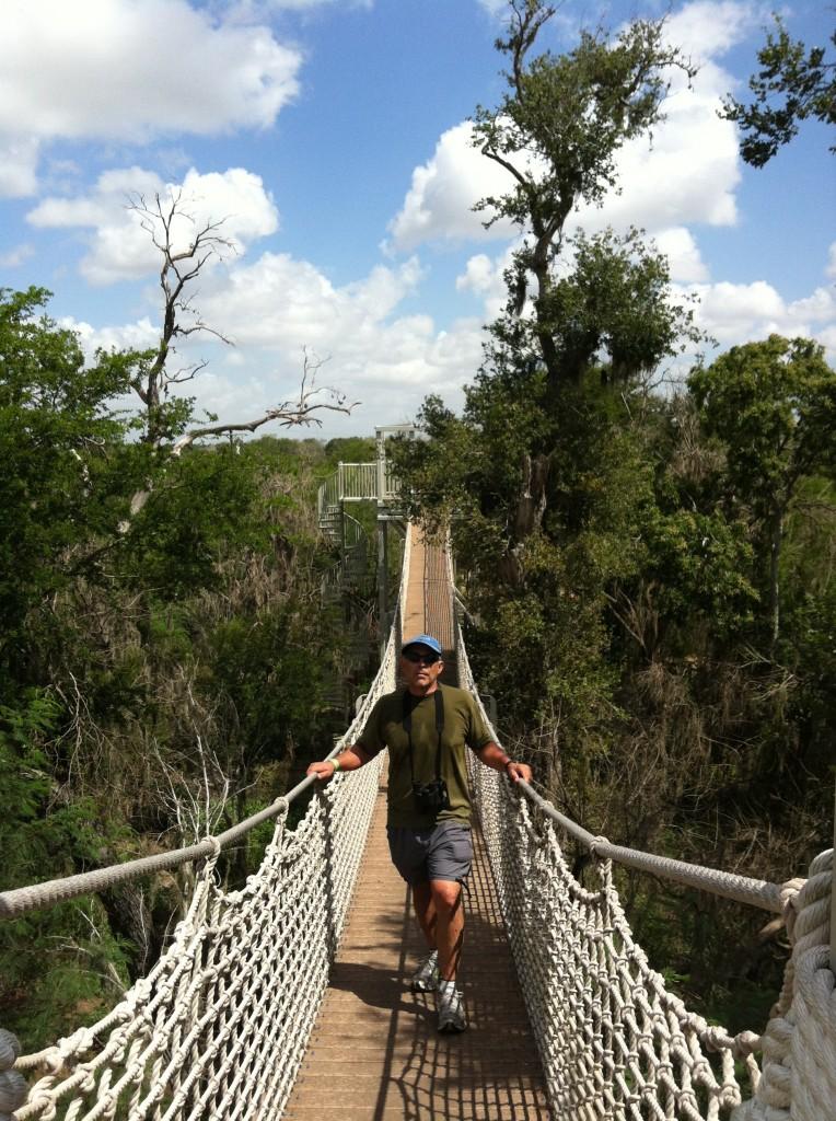 Rivard Report Director Robert Rivard walks along the Canopy Walk at Santa Ana Wildlife Refuge, which could soon include a border wall.