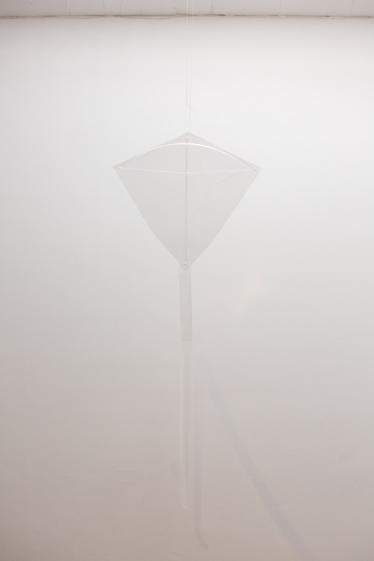 Holly Veselka, to make the invisible visible, 2017