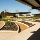 The Culinary Garden at San Antonio Botanical Garden.