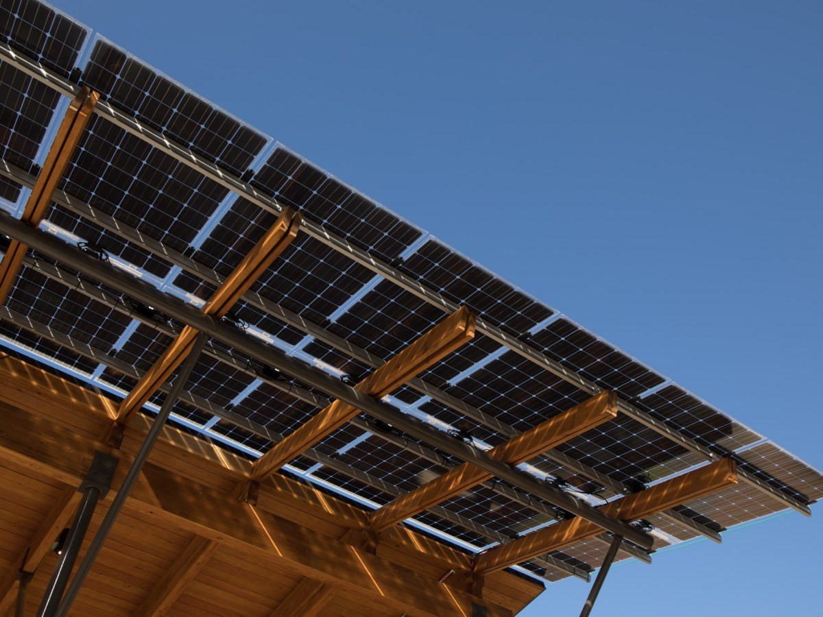 The Conservation Pavilion at Will Smith Zoo School is lined with solar panels.