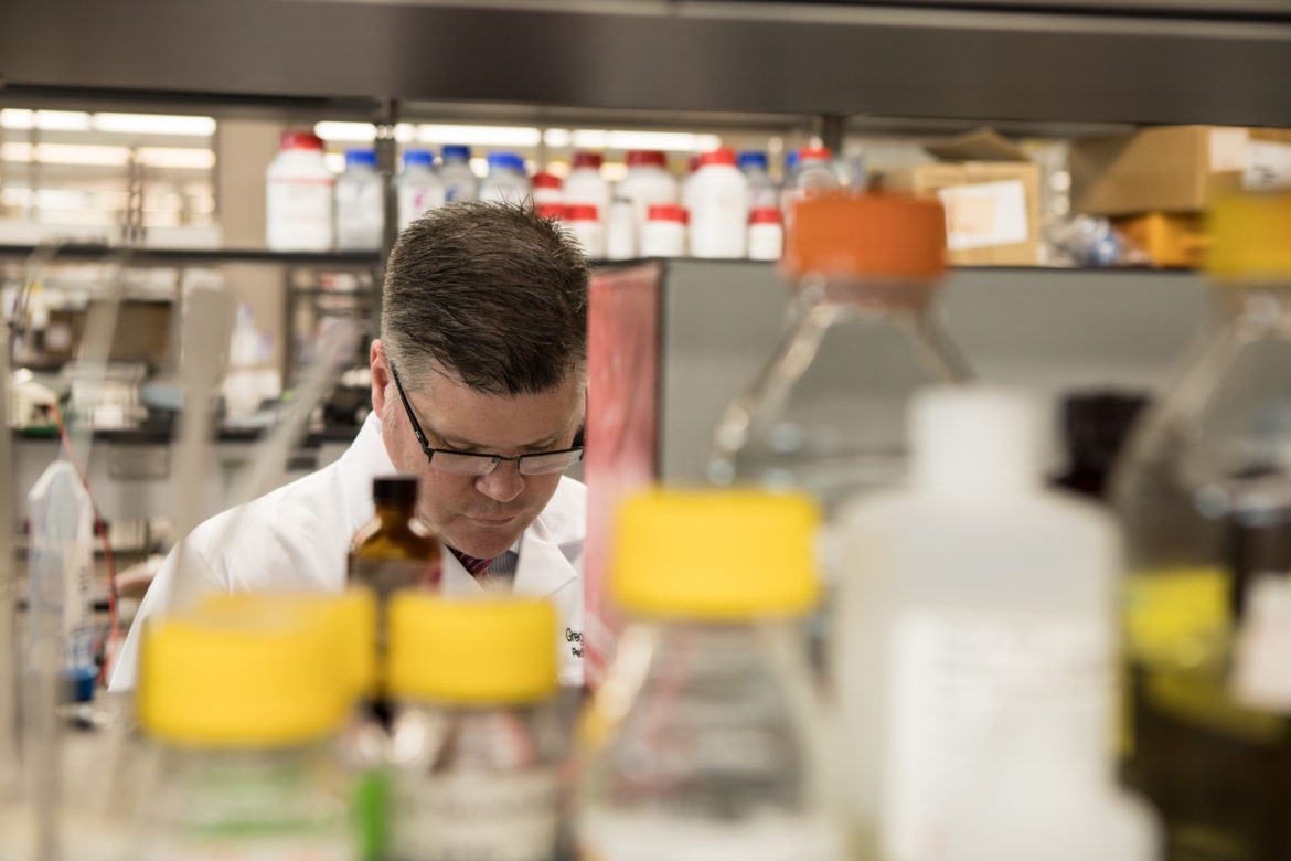 UT Health San Antonio Pediatric Oncologist Gregory Aune prepares samples for analysis of protein from heart tissue.