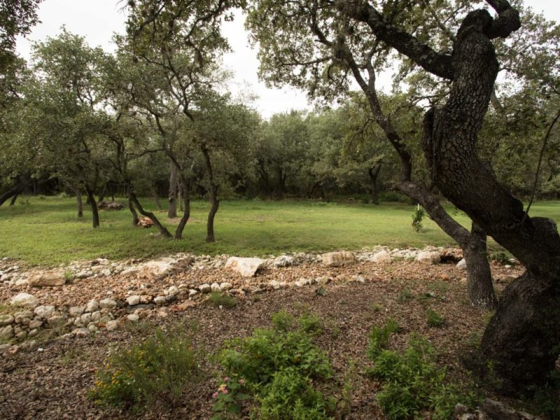 The Edwards Aquifer Recharge Zone in Shavano Park.
