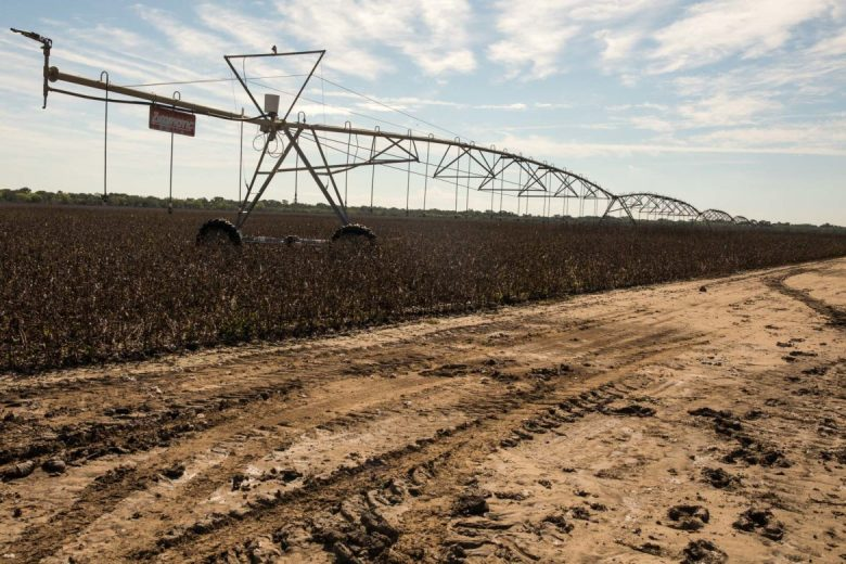 Center pivot irrigation systems are costly and farmers across the country have to weigh which crops get additional water and which will rely strictly on rainfall.
