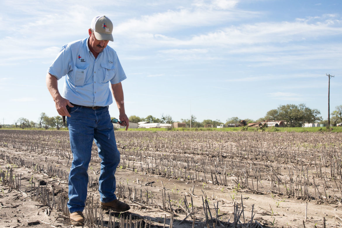Russel Boening outlines where he intends on seeding his next crop rotation on his family farmland.