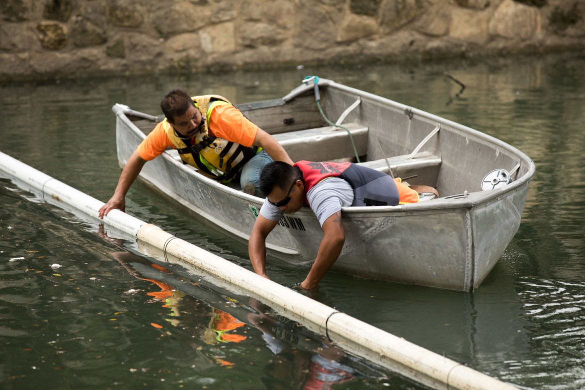 (left) Francisco Gonzales and Cesar Garcia install a silt fence to catch debris and other fine materials from floating downstream the San Antonio River.