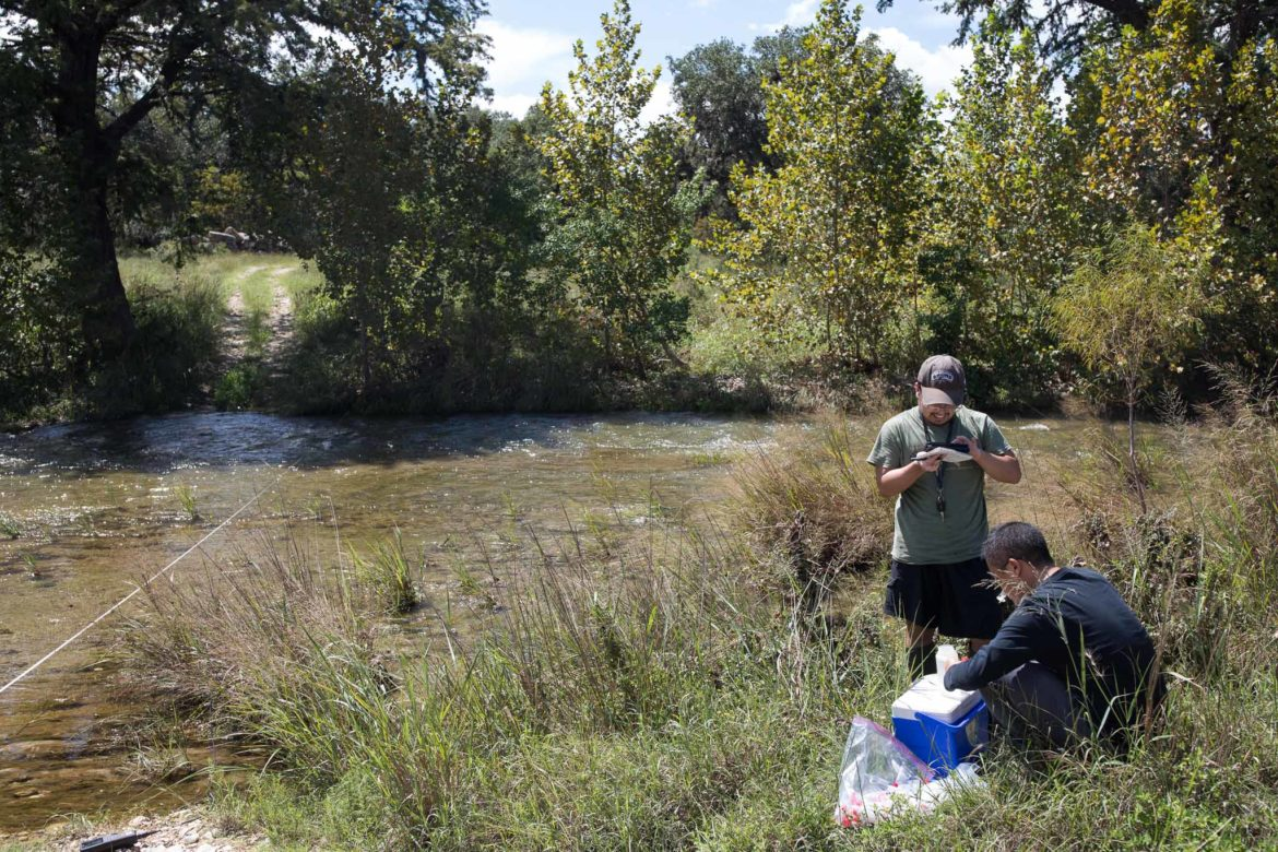 UTSA students take water sampling from the Cibolo Creek in an effort to identify levels of estrogen which could be harmful to aquatic life.
