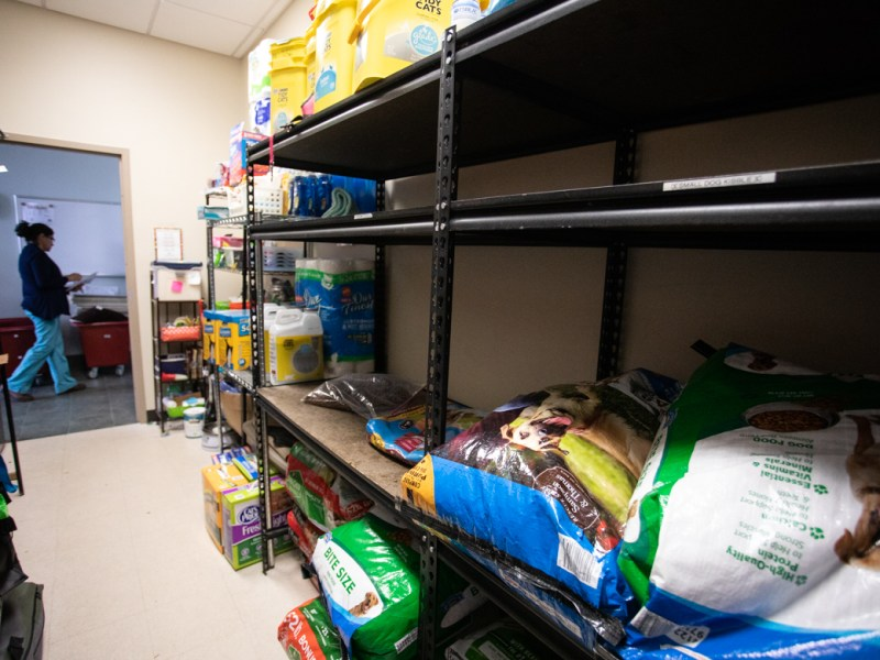 A volunteer walks past the pet pantry at Animal Care Services.