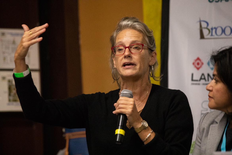 Dr. Christine Drennon, Director of Trinity University's Urban Studies program and Associate Professor of Sociology and Anthropology.