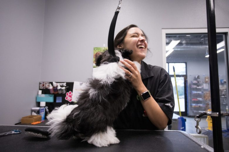 Tiphani Villarreal prepares to groom a dog.