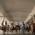 Cowboys wait under the I-35 overpass before driving longhorns through downtown San Antonio.