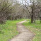 An off-shoot nature trail that branches off from the main concrete trail near Pearsall Park.