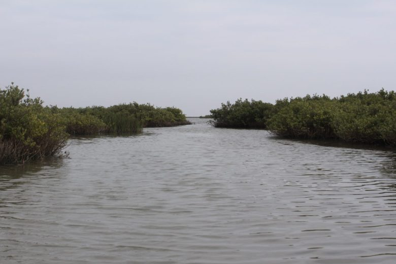 Redfish Bay and Lighthouse Lakes are a maze of marshes that make up a productive fish and wildlife habitat.