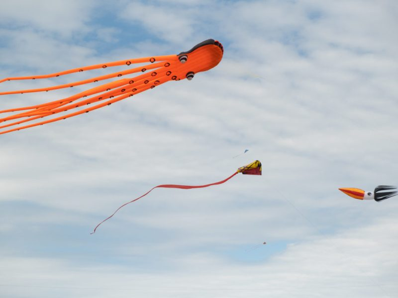 "Giant kites guided by professional team ""Go Big or Go Home"" fly through the air during the festival."