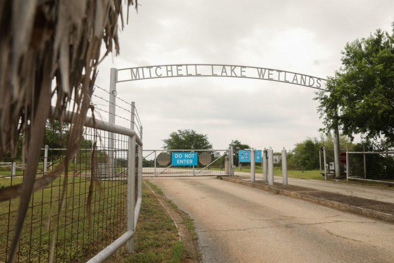 The Mitchell Lake Wetlands