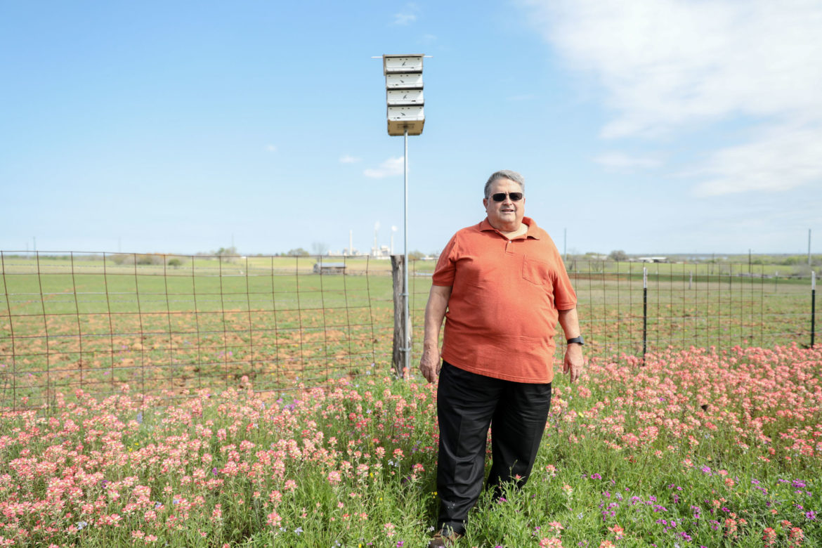 George Dziuk Jr. stands in a patch of wildflowers and in front of his home made bird houses that attract Purple Martins on his families land in Elmendorf.