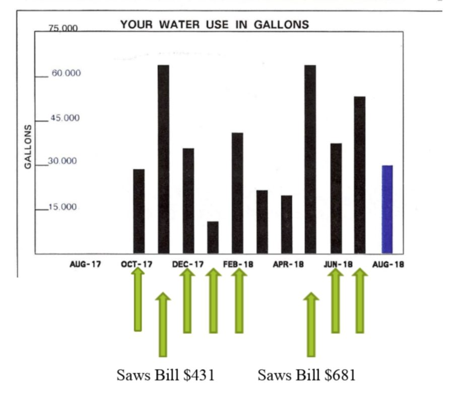 This graph shows Eden Duck Pond's water use in gallons each month.