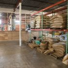 Bags of coffee beans line the shelves of the What's Brewing Coffee Roasters warehouse, ready to be roasted.