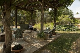 Deborah Sibley sits in the wisteria-covered dining pergola in her backyard.