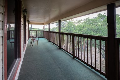 A tree line view from the balcony of the Falk residence.