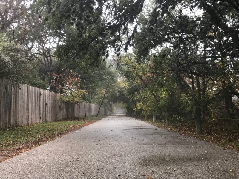 The Salado Creek Greenway Trail disappears into the mist on a November day.