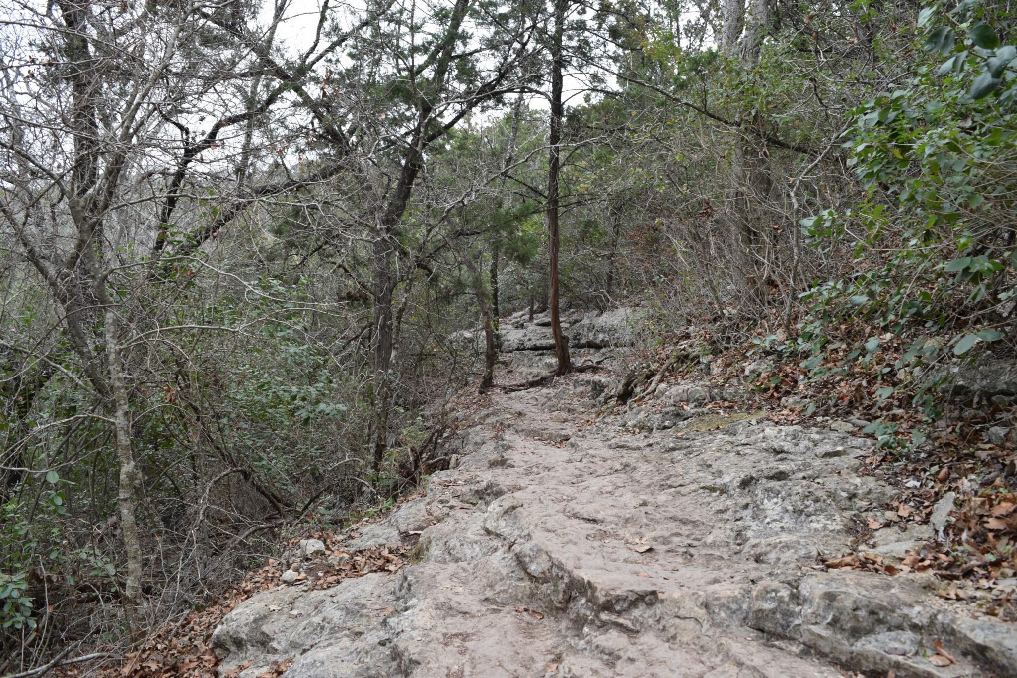 Part of the Vista Loop trail follows a limestone ledge at Friedrich Wilderness Park.