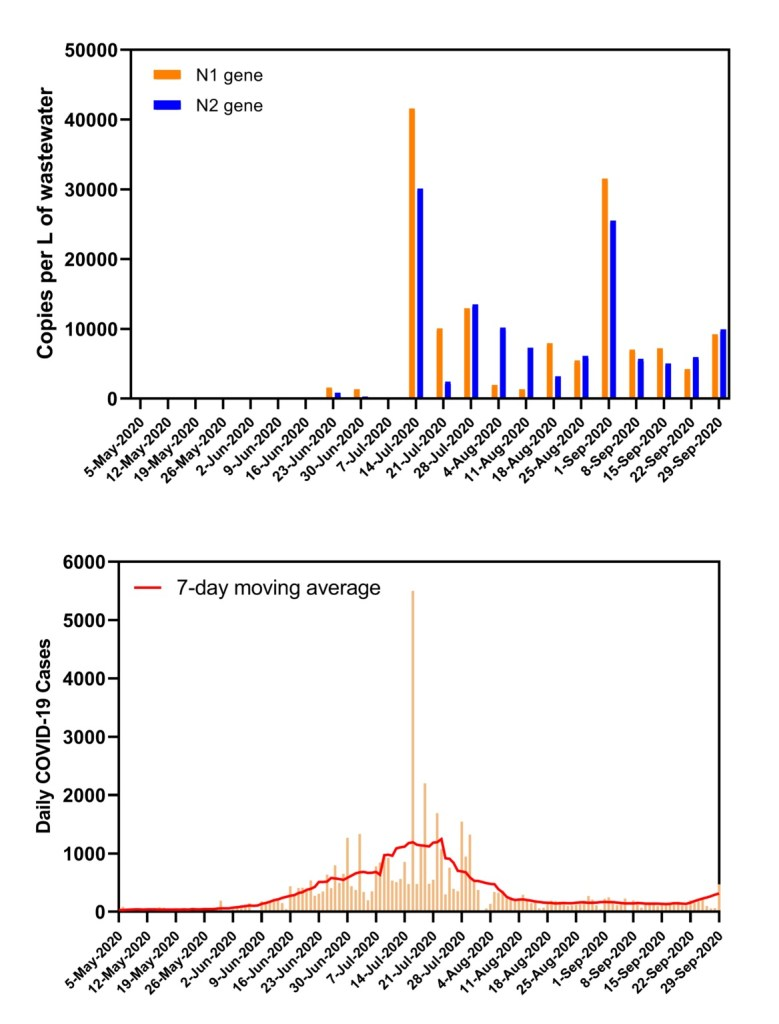 A graph of two genes specific to the SARS-CoV-2 virus found in wastewater from the Salatrillo wastewater treatment plant. The concentration of virus in the wastewater roughly correlates to Bexar County coronavirus cases, as reported by the San Antonio Metropolitan Health District.