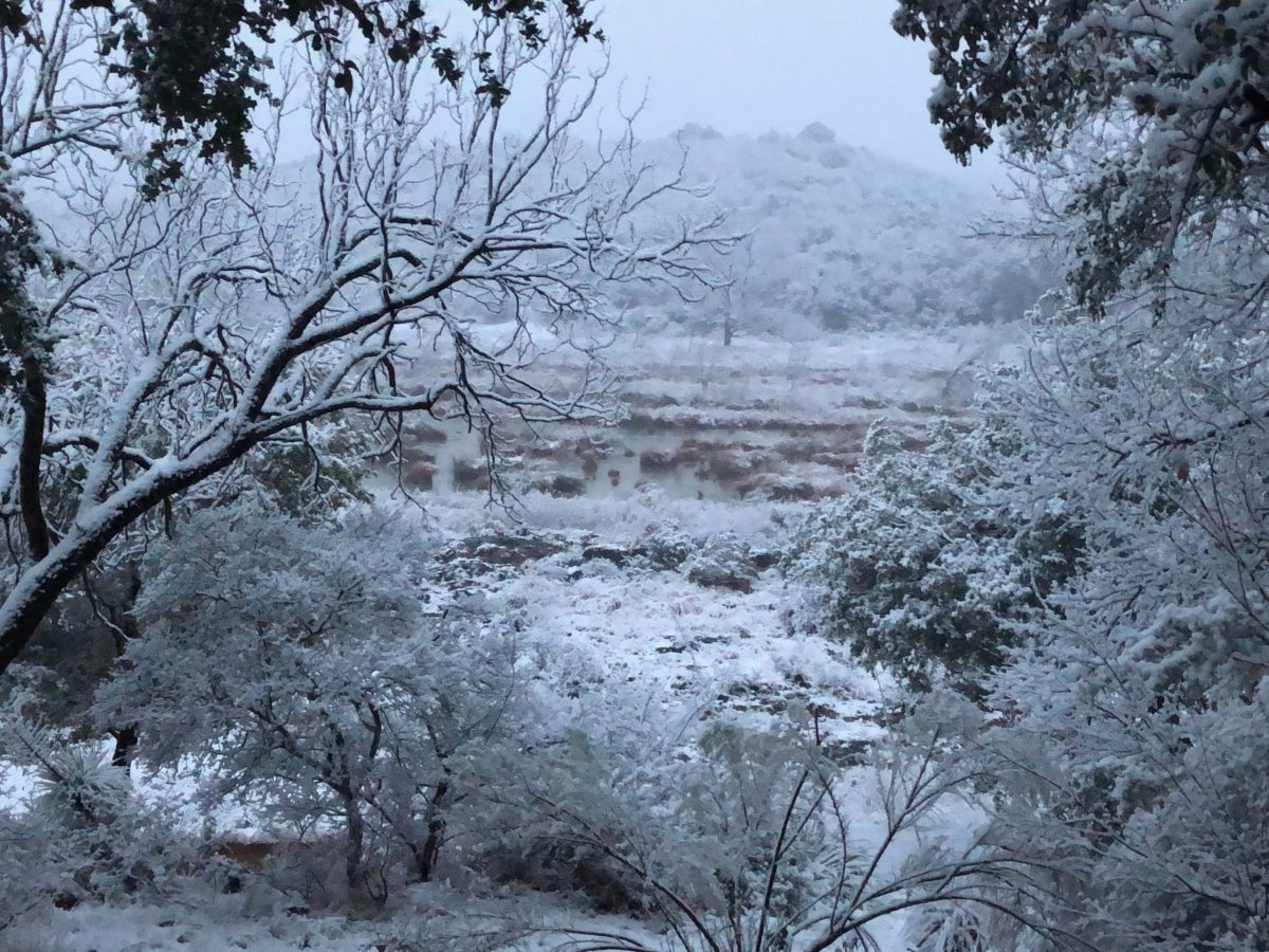 In the afternoon hours on Dec. 31, it snowed in the Hill Country along the Llano River about 25 miles west of the town of Mason.