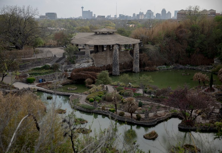 The Japanese Tea Garden was featured as a landmark during a Promenade through the Park event hosted by the Brackenridge Park Conservancy on Wednesday in San Antonio. The conservancy offered guests a chance to drive through an otherwise closed portion of Brackenridge Park as a way to celebrate the importance of the park to the city.