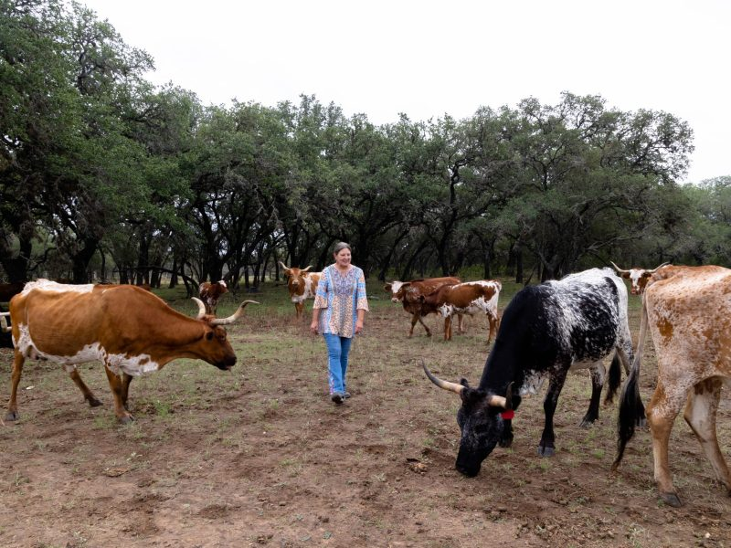 Debbie Davis cohabitates with 50 cows, three bulls and a pet steer on their 1,883 acre ranch.