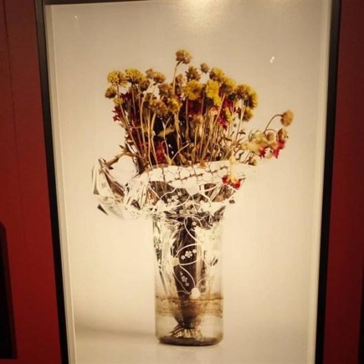 Kurumuş öiçekler 16