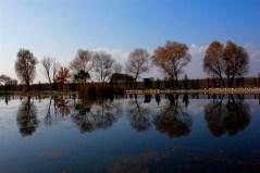 Uçarı Göl Park 4