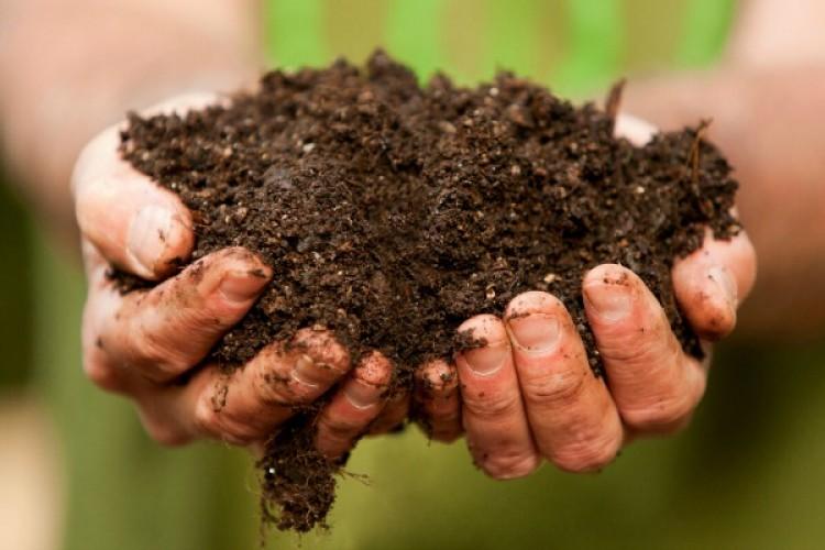 Toprakla Uğraşmak