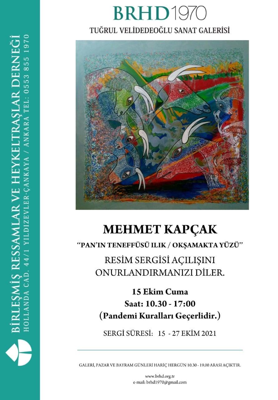 Mehmet Kapçak'ın Resim Sergisi Açılıyor