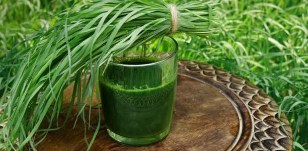 Sucul de grâu – elixirul care vindecă bolile