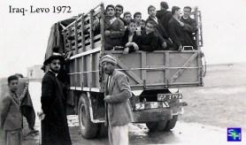 iraq-levo